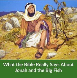 jonah outside nineveh